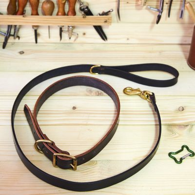 English Bridle Leather Dog Collar and Lead